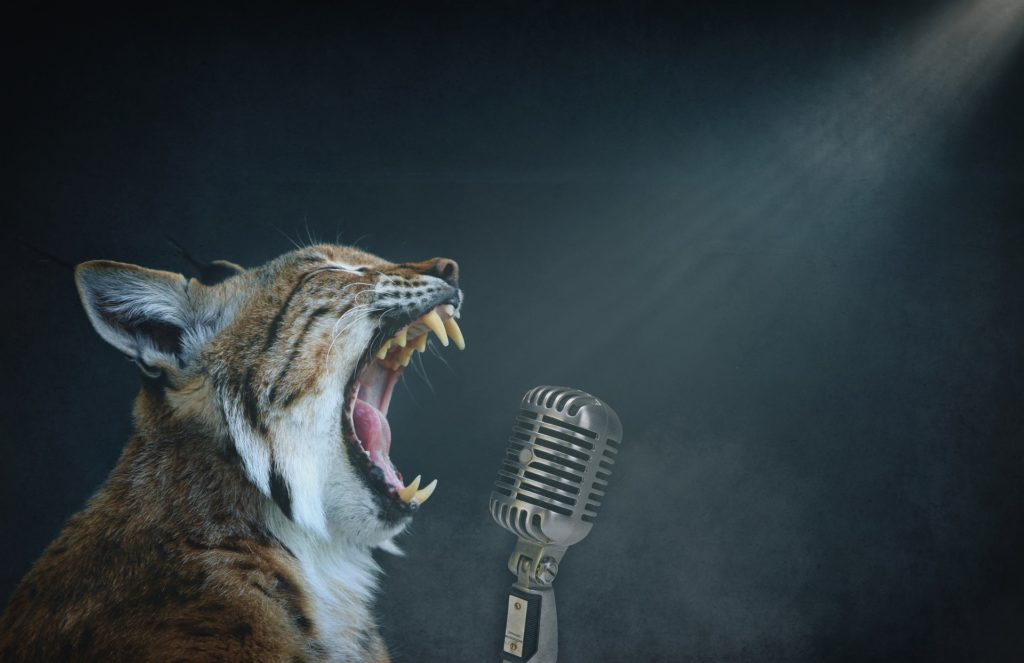 Découvrez les secrets de l'échauffement vocal idéal